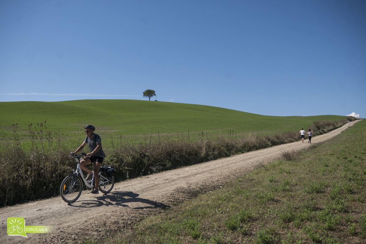 Via Francigena ciclabile tra le colline senesi