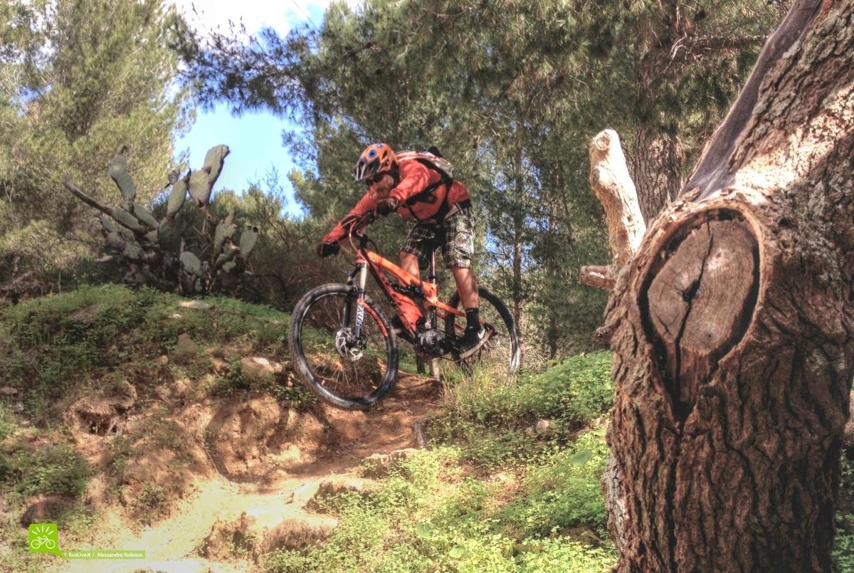 bici-elettrica-Scott-eSpark21.jpg