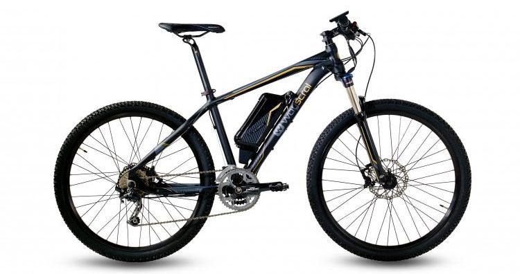 Una foto della 655 della serie Sport delle bici elettriche Wayscral