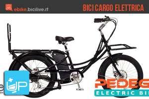 La bicicletta cargo elettrica Pedego Stretch