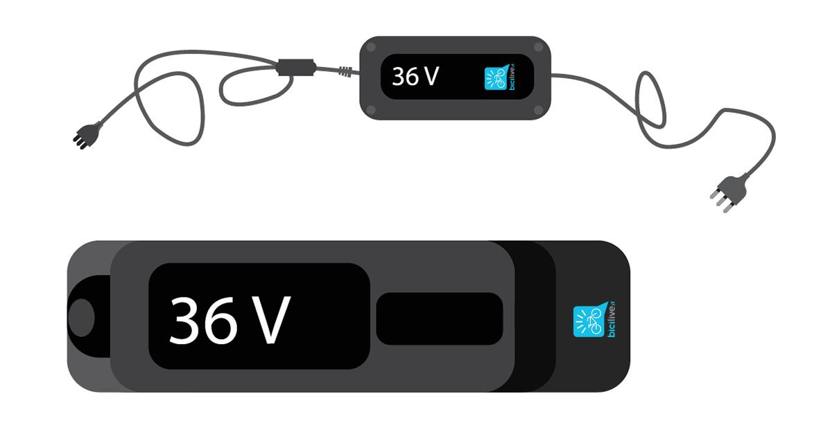 foto di una batteria di una ebike corrispondente al suo caricatore da 36V