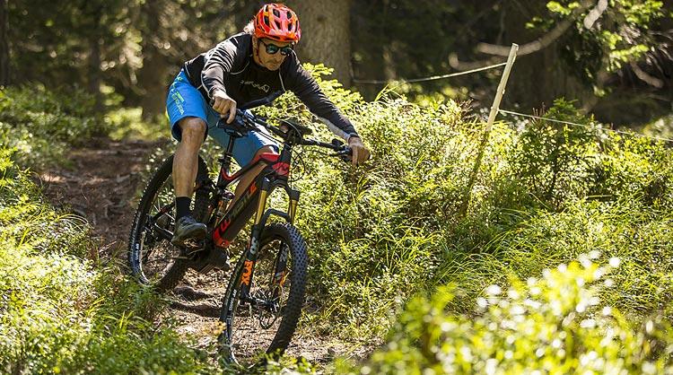 mountain bike elettrica con batteria integrata whistle