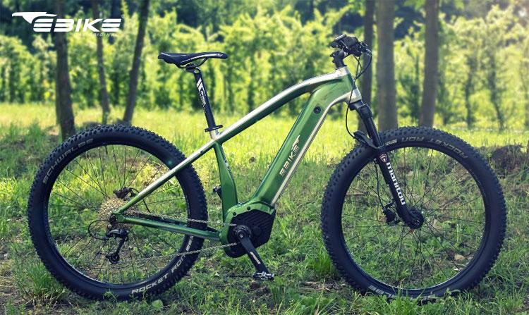 Una bici a pedalata assistita R004 Indianapolis del marchio Ebike Das Original