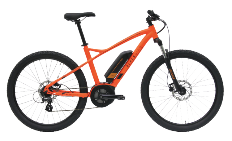 Black Bird RS-E1 eMTB hardtail