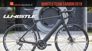 eRoad Whislte Flow Carbon 2019