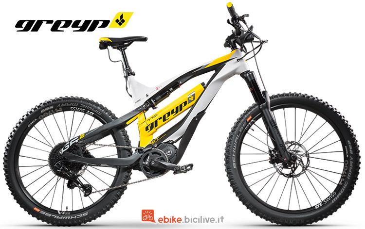 Bici elettrica Greyp G6.2 anno 2019
