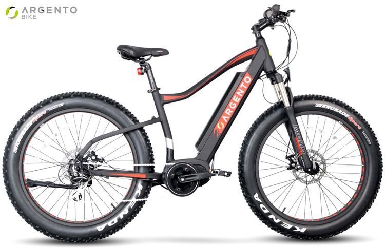 Una fat bike a pedalata assistita Argento Bike Elephant Pro
