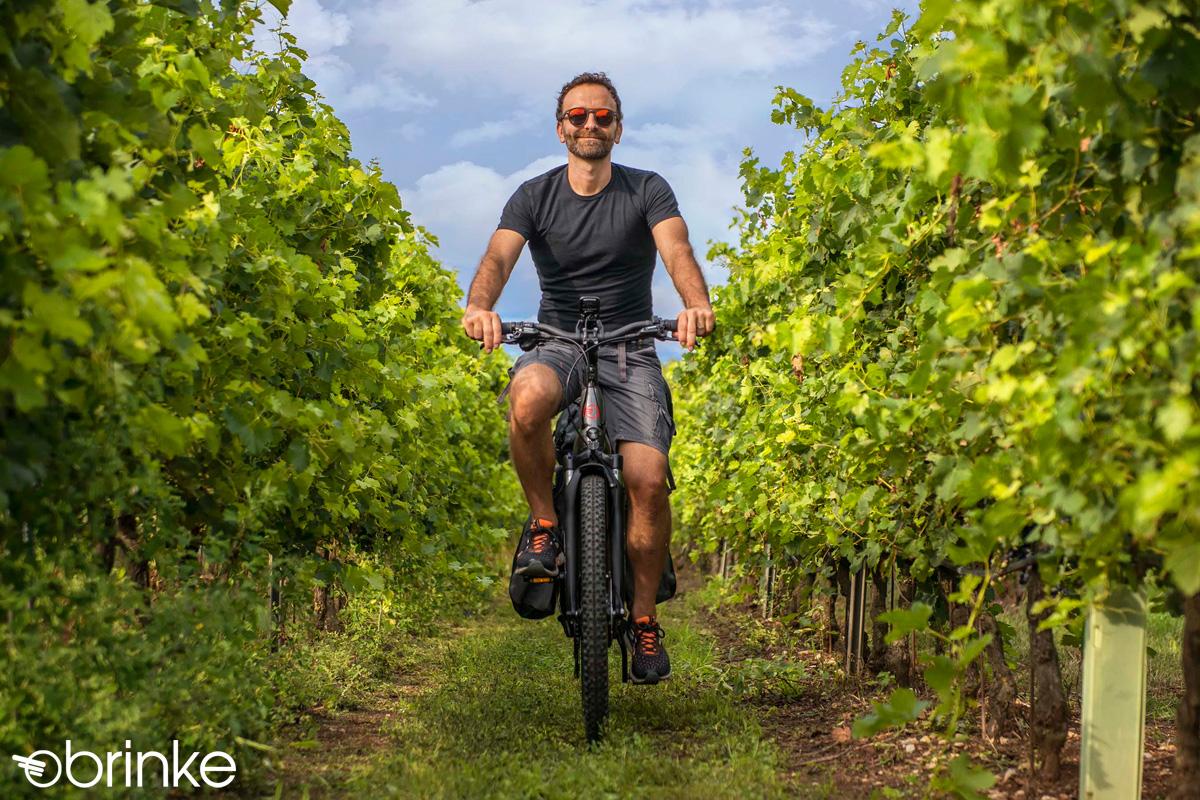 Ciclista in mezzo alla Natura in sella a una bici e-Trekking Brinke del 2020