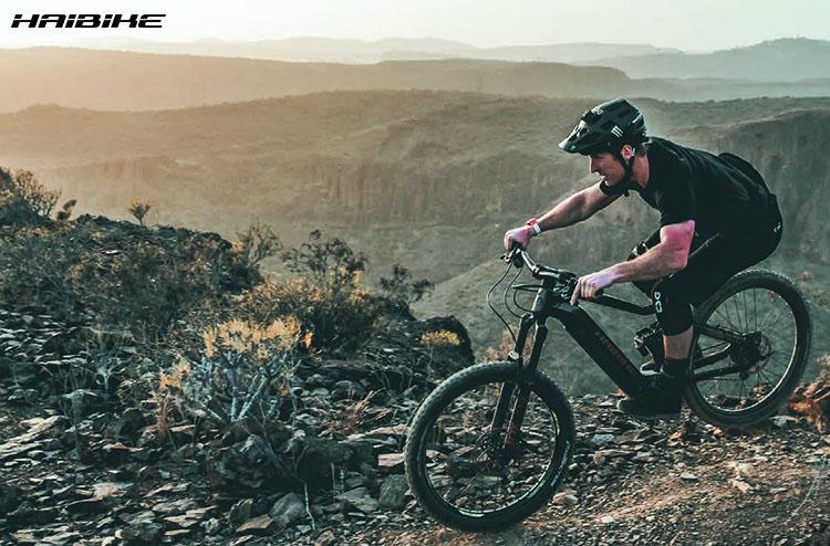 La bici ebike haibike Xduro Sduro 2020