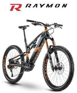 Mountain bike elettrica di R Raymon
