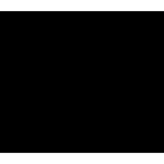 Sito Web Noleggio