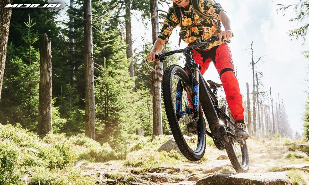 Un ragazzo pedala su un percorso nel bosco in sella ad una nuova mountainbike elettrica Nicolai Eboxx 2021