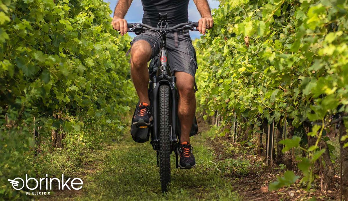 Un uomo pedala tra le piante sulla nuova ebike trekking Brinke 2021