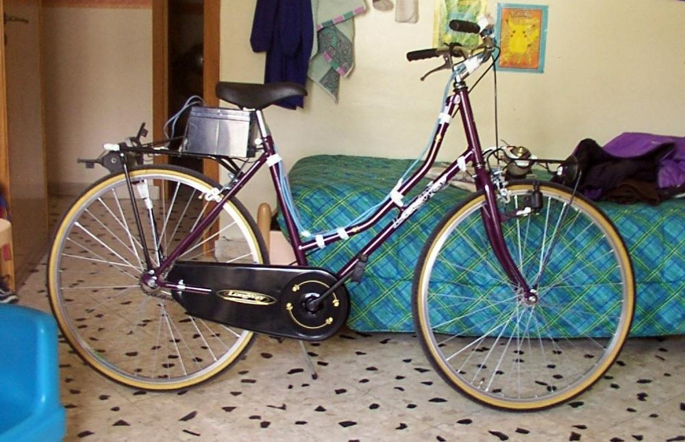 Ernesto e la genesi della ebike bici elettrica fai da te for Sifone elettrico per acquario fai da te